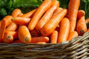 Karotten-als-Hautschutz